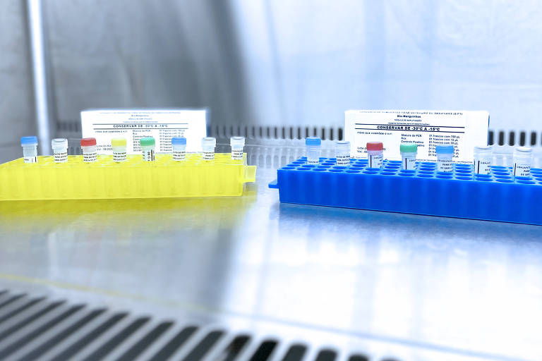 Testes coronavírus